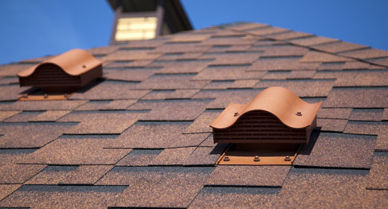 Asphalt Roof Shingles